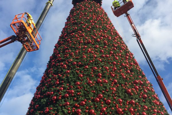 Erecting the UK's tallest tree at the Cheshire Oaks Outlet Centre