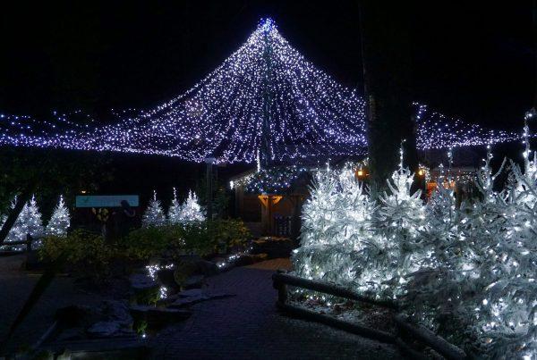 Center Parcs Village Square winter wonderland